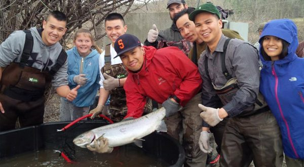 Credit river fishing report 2014